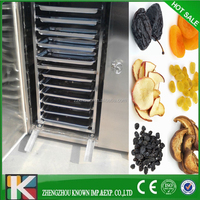 Factory Outlet Vacuum Food freeze dryer /Commercial Fruit freeze drying machine for sale