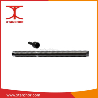 M16 Stainless steel chemical anchor ,Stud/ROD anchor stake made in China