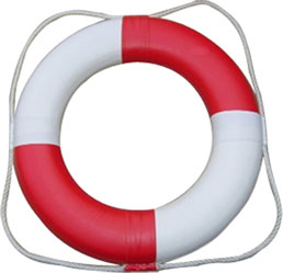 Swimming Pool Survival Equipment Marine Life Buoy/Life Saving Floating Rings