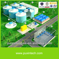 cow dung biogas power plant