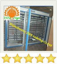 poultry chicken lab incubator egg incubator for sale