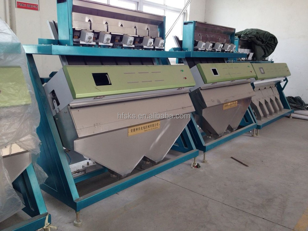 Best sorting machine CCD green coffee beans colorized sorter machine in China
