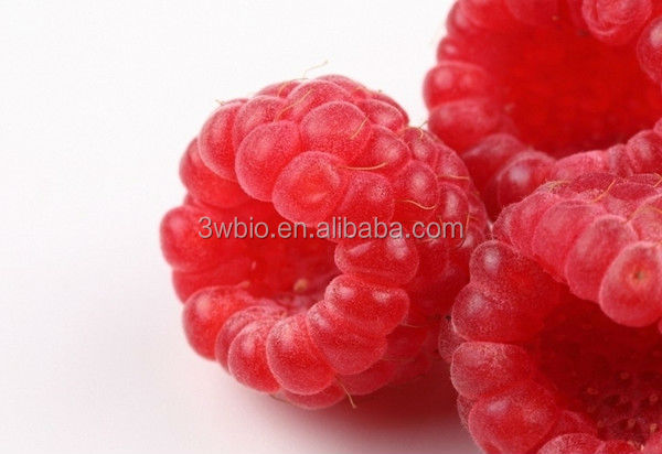 Health Food Black Raspberry Ketone Extract,Raspberry Extract,High Quality product