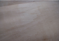 high quality beech plywood sheet for furniture