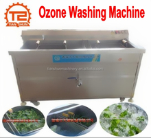 Leafy Vegetables Ozone Bubble Washing and Cleaning Machine