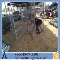 Characteristic Baochuan hot sale new design fashionable pet house/dog/pet cage/runs/carriers