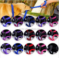 cheap wholesale 15 colors metal chain nylon strong braided rope dog collar and leash
