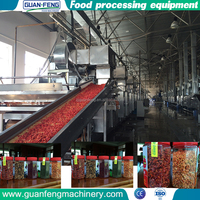 fruits dehydrated ginger industrial dehydrator machine price