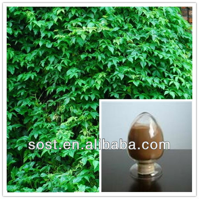 Chinese Ivy Stem Extract for beauty