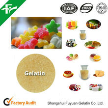Top Quality Thickeners,Chewing Gum Bases,Stabilizers Type Edible Gelatin Powder