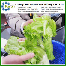 High Pressure Ozone Vegetable and Fruit Washer|Fruit Ozone Water Bubble Leafy Vegetable Washing Machine