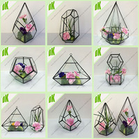 Hotsell new design for home decor air plant Moss Micro Landscape Ecological Glass Terrarium