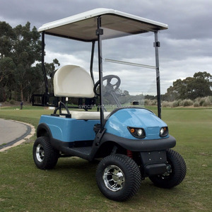 1800W Mini Single seat electric golf cart,Cheapest golf cart.