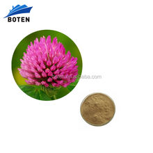 Top Quality T. pratense Red Clover Extract OEM