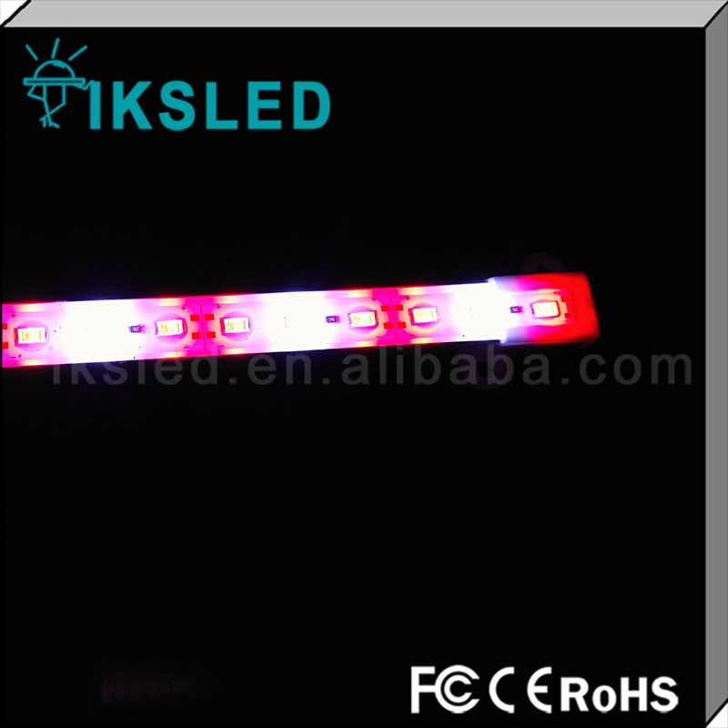 Customized!!Hot Selling SMD 5630 waterproof 12v red blue ratio led grow light strip