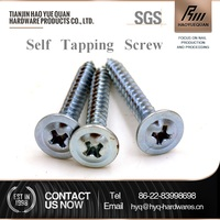 stainless steel bugle head phillips driver drywall tapping screw