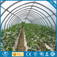multi-span hydroponic agricultural film greenhouse popular umbrella greenhouse greenhouse plastic clips