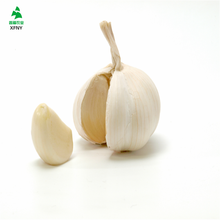 2017 hot sale jinxiang china fresh garlic