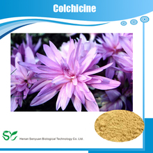 GMP factory supply natural plant extract colchicine