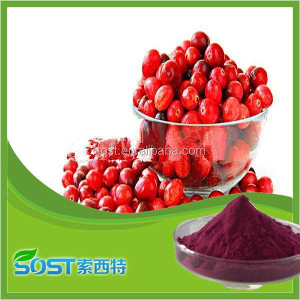 top quality natural cranberries extract