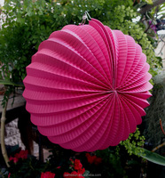 Chinese Hot Pink decorative Pleated Accordion Paper Lanterns