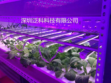 Vanq led grow tube light 20w 1.2M no fan for hydroponic tray March April promotion