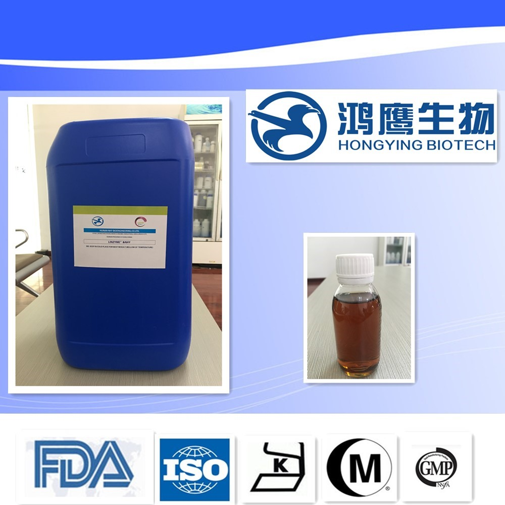 Widely Used in Starch Sugar Industry Glucoamylase