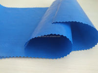 Waterproof Canvas Tarps Manufacturing Blue Plastik Tarpaulin Covers
