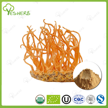 Free samples Water soluable cordyceps extract powder king of cordyceps for health
