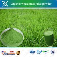 factory price wheatgrass extract wheatgrass powder