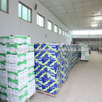Jinxiang garlic factory