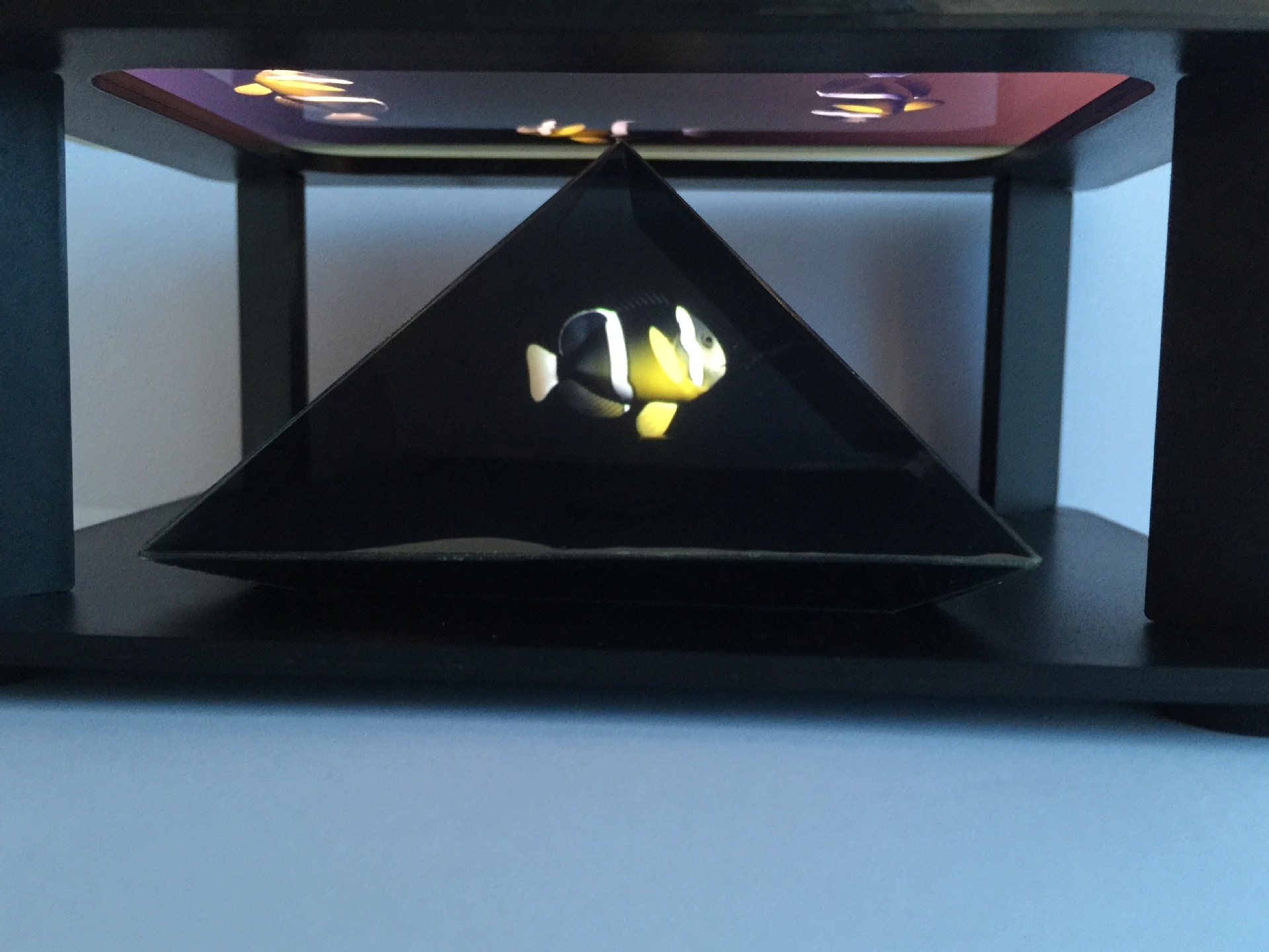 holographic display (91).jpg