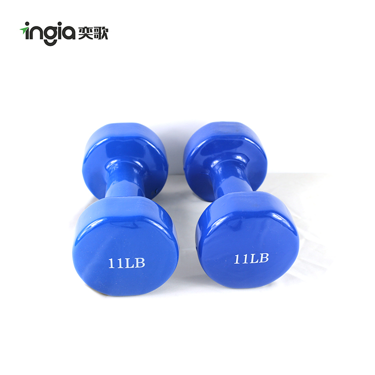 Home Exercise Fitness Equipment Arms Exercise Cast Iron Dumbbell for Women