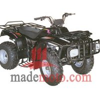Gas-Powered 4-Stroke Engine Quads Bike with Double Cylinder Engine WZAT2502