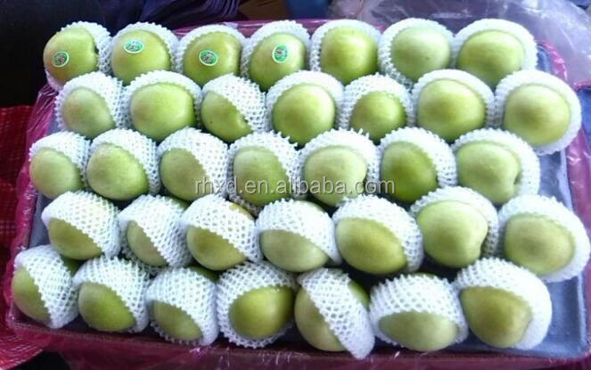 China fresh Green <strong>apples</strong> with best price