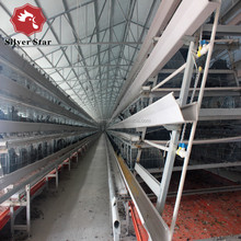 Poultry farm 3tier chicken layer cage