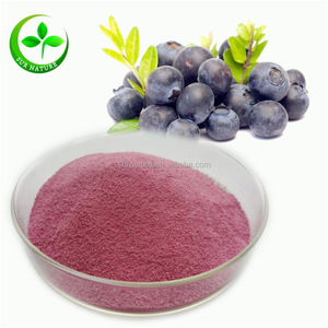 Natural Fruit Nutritional Freeze Dried Organic Blueberry Powder