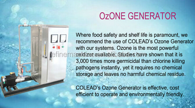 SUS 304 ozone sterilization machine/ozone washing machine/ozone fruit and vegetable sterilizer