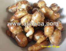Aromatic Ginger/Sand Ginger/Cutcherry or Resurrection Lily/Kencur.