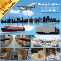 professional ocean shipping service