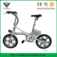 36 Voltage Golden Motor Brand E Road Electric Bicycle