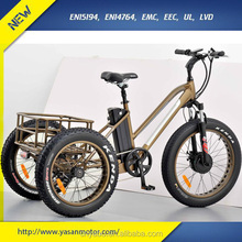 "6061 Alu Alloy 24"" Three Wheel Electric Tricycle for Cargo Carrying Bicycle"