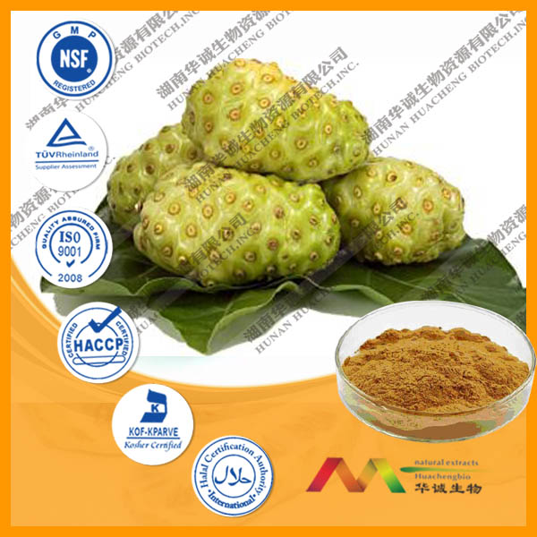 High Quality Morinda Citrifolia Extract / Noni Extract