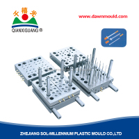 Injection Plastic Mould/Mold Manufacturer for syringe