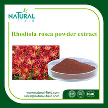 Factory supply good selling pure nature rhodiola rosea powder extract rosavins 3% salidroside 1%