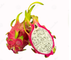 high quality Dragon Fruit P.E. factory direct sale and good price