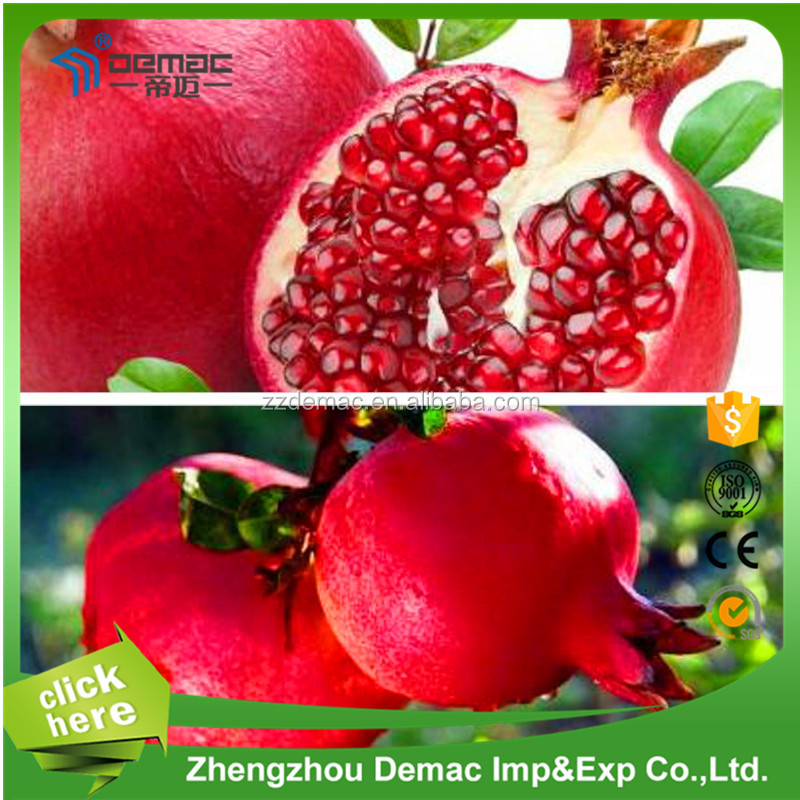 Pomegranate Peeling Machine/Pomegranate Separator/Pomegranate Juicer Price