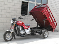 Big Power 250cc Gas Three Wheel Tricimoto With Wagon Box On Sale