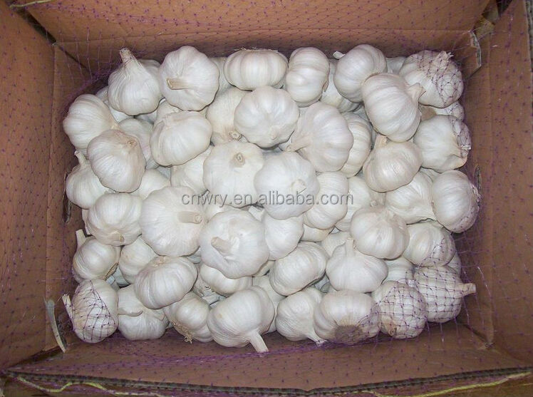2015 china garlic