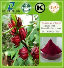 Food grade hibiscus flower extract/hibiscus sabdariffa on sale/low price